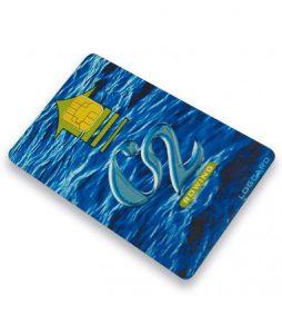 logcard